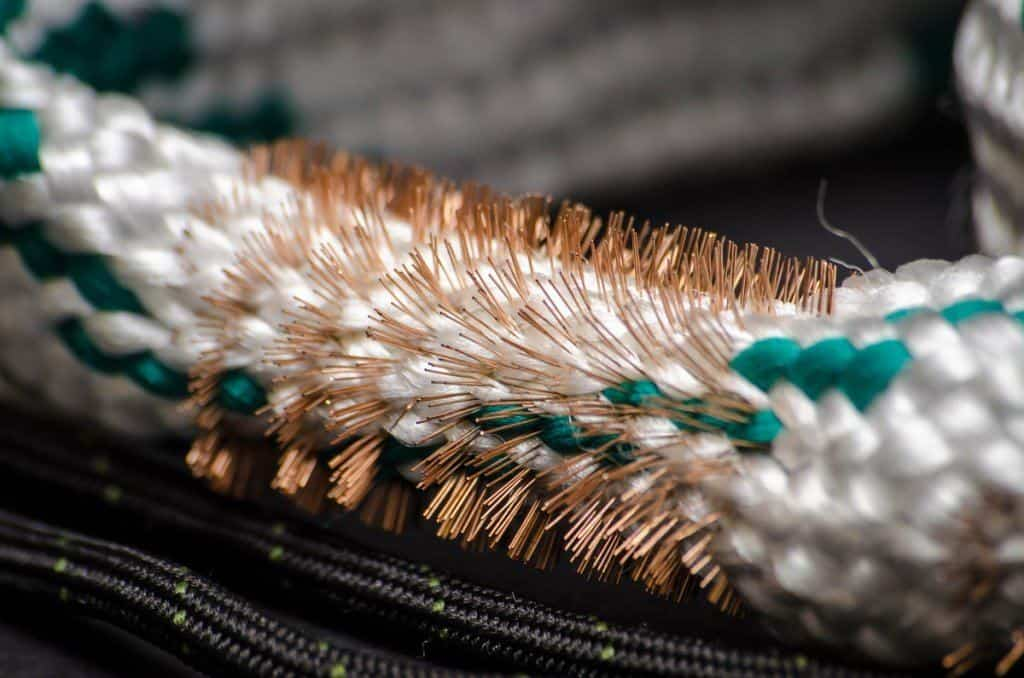 Close up of a bore snake's copper brushes