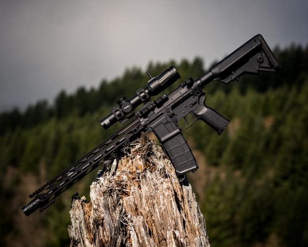 Rifle placed in a wood stump at an outdoor gun range in Iowa
