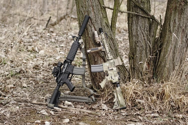 Rifles resting on a tree